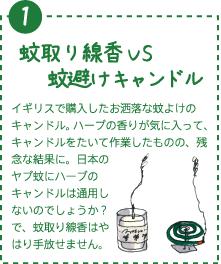 イギリスで購入したお洒落な蚊よけのキャンドル。ハーブの香りが気に入って、キャンドルをたいて作業したものの、残念な結果に。日本のヤブ蚊にハーブのキャンドルは通用しないのでしょうか?で、蚊取り線香はやはり手放せません。